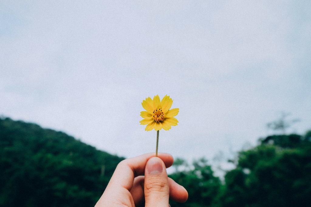 Como Sentir-se Seguro e Apoiado em Seu Relacionamento