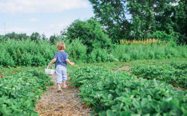 Kid-friendly Mindfulness Activities 8 (1)