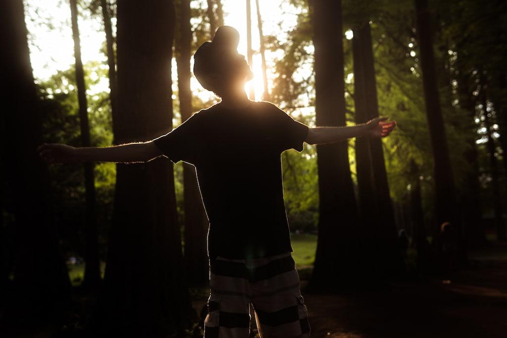 森林浴に出かけよう!マインドフルネスな過ごし方